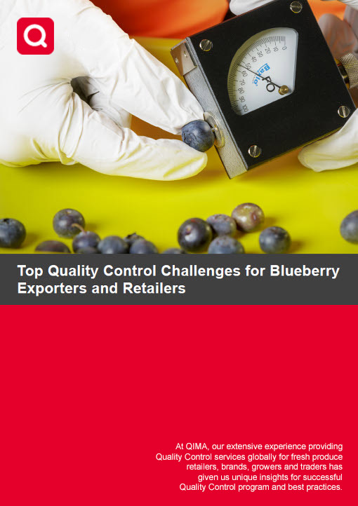 Top Quality Control Challenges for Blueberry Importers, Exporters and Retailers